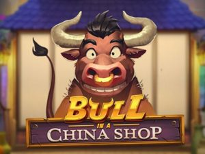 bull-in-a-china-shop