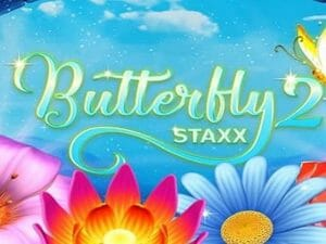 butterfly-staxx2