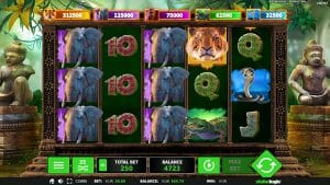Stakelogic Big 5 Jungle Jackpot